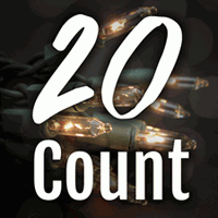 20 Count Craft Lights
